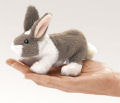 Mini Bunny Rabbit (10)
