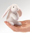 Mini Rabbit, Lop Eared (12)