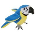 Blue & Gold Macaw (12)