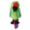 Military Macaw (12)