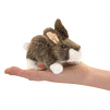 Mini Cottontail Rabbit (19)