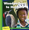 Woodpeckers to Helmets (19)