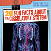 20 Fun Facts About the Circulatory System (19)