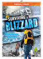 Surviving a Blizzard (21)