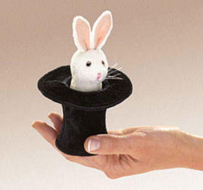 Mini Rabbit in Hat (07)