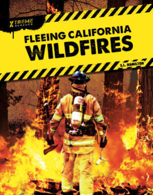 Fleeing California Wildfires (20)