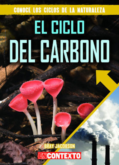 Nonfiction Books El Ciclo Del Carbono Carbon Cycle The 20
