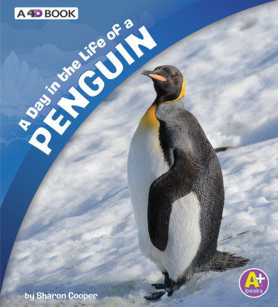 A Day in the Life of a Penguin: A 4D Book (19)