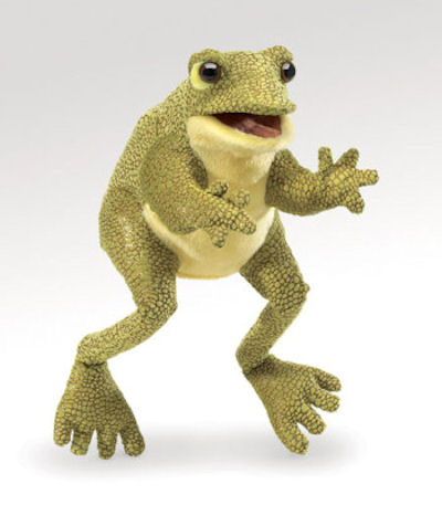 Frog, Funny (15)