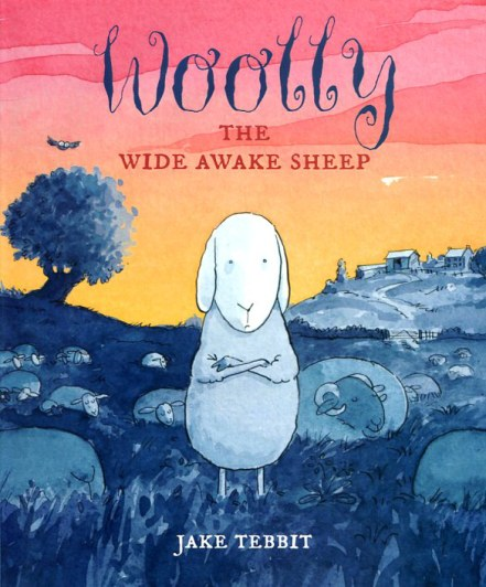 Woolly the Wide Awake Sheep (18)
