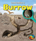Burrow: Look Inside (13)