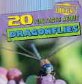 20 Fun Facts About Dragonflies (13)