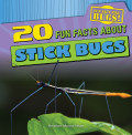 20 Fun Facts About Stick Bugs (13)