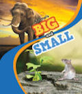 Animals Big and Small (14)