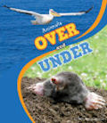 Animals Over and Under (14)