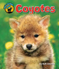 Coyotes (14)