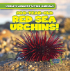 200-Year-Old Red Sea Urchins! (17)