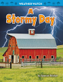 A Stormy Day (19)