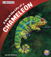 A Day in the Life of a Chameleon: A 4D Book (19)