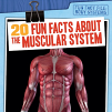 20 Fun Facts About the Muscular System (19)