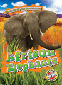 African Elephants (20) Level 2