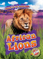 African Lions (20) Level 2