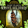 How Plants Survive Wildfires (20)