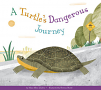A Turtle's Dangerous Journey (20)