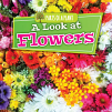 A Look at Flowers (20)