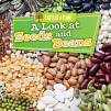 A Look at Seeds and Beans (20)