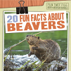 20 Fun Facts About Beavers (21)